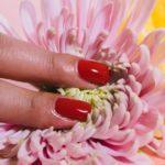 Come sono collegate le unghie fragili e il collagene?